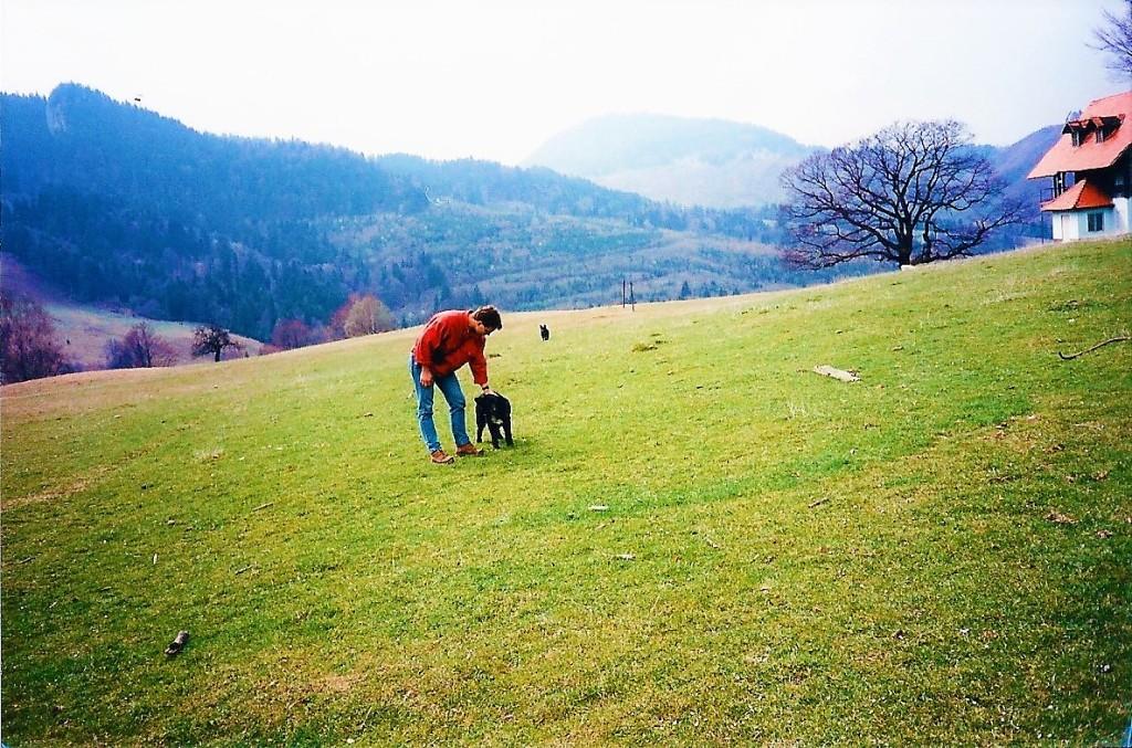 Carpathians1